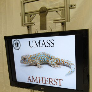 A 16 sq inch Geckskin pad holding a 42-inch screen TV on glass